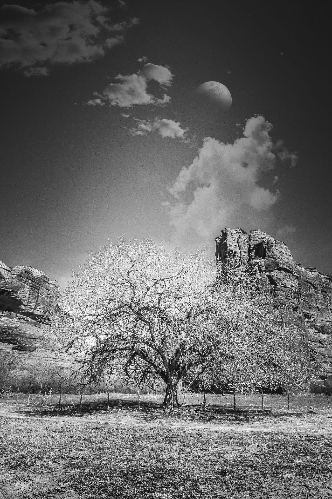 Sacred Indian Ground